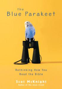 blueparakeet